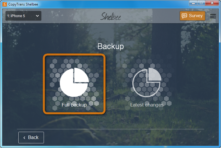 window with full backup button selected