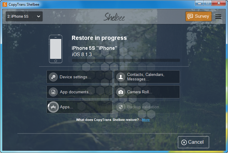 copytrans shelbee iphone restore in process