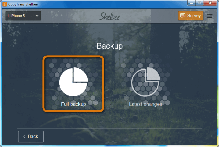 click on full backup button in main shelbee window